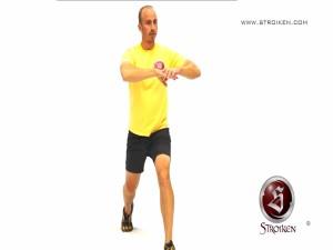 20131024-Stroiken-Desplante atras con flexion lat